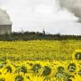 Rassegna Stampa Se credete che il fenomeno dei rifiuti interrati riguarda solo il Sud, vi sbagliate di grosso, infatti dalle risaie del Vercellese a Pordenone, il terreno della Valpadana è […]