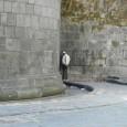Napoli- Degrado in Porta Capuana altro che luminarie percorso turisticoecc.ecc. a pochi passi dalla sezione dei vigili urbani, nessuno rispetta le normative. l'ASIA quando si degna di prelevare fa un […]