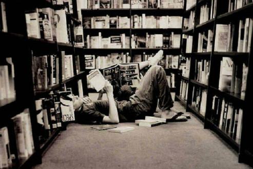 librerie-493x330